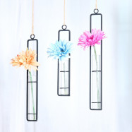 Hydroponic Hanging Long Glass Vase with Iron Frame Potted Plant Container