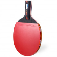 REGAIL D003 Table Tennis Ping Pong Racket One Penhold Bat Paddle Ball