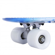 22 inch Dolphin Pattern Four-wheel Street Long Plastic Fish Skateboard