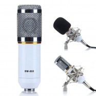 Condenser Sound Recording Microphone and Metal Shock Mount for Radio Broadcasting Studio