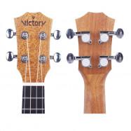 Soprano Ukulele 21 inch Mahogany Aquila String Beginner Kit