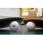 REGAIL 30pcs 3-star Practice Table Tennis Ping Pong Ball