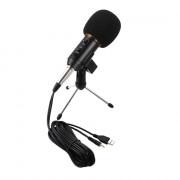 BM - 300FX Audio Sound Recording Condenser Microphone with Foldable Tripod